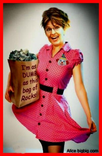 Sarah Palin Dumb as a Bag of Rocks