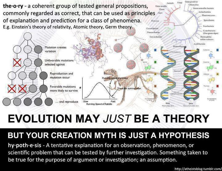 5 facts about evolution and religion