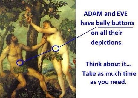 Adam And Eve Belly Buttons