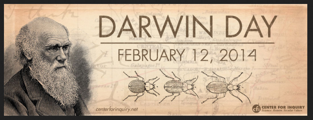 You Darwin is an asshole excellent